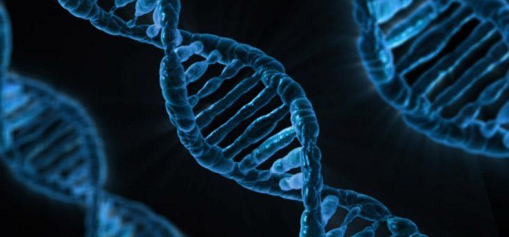 Cinéma et médecine: le clonage