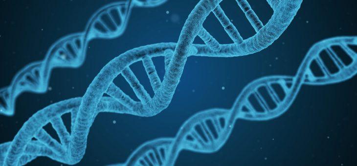 «Bébés OGM»: l'OMS lance un registre mondial des recherches